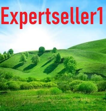 expertseller1