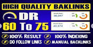 Bulid 10 PBN Backlinks DR60 to75+ Unique Domain High Qulity Domain