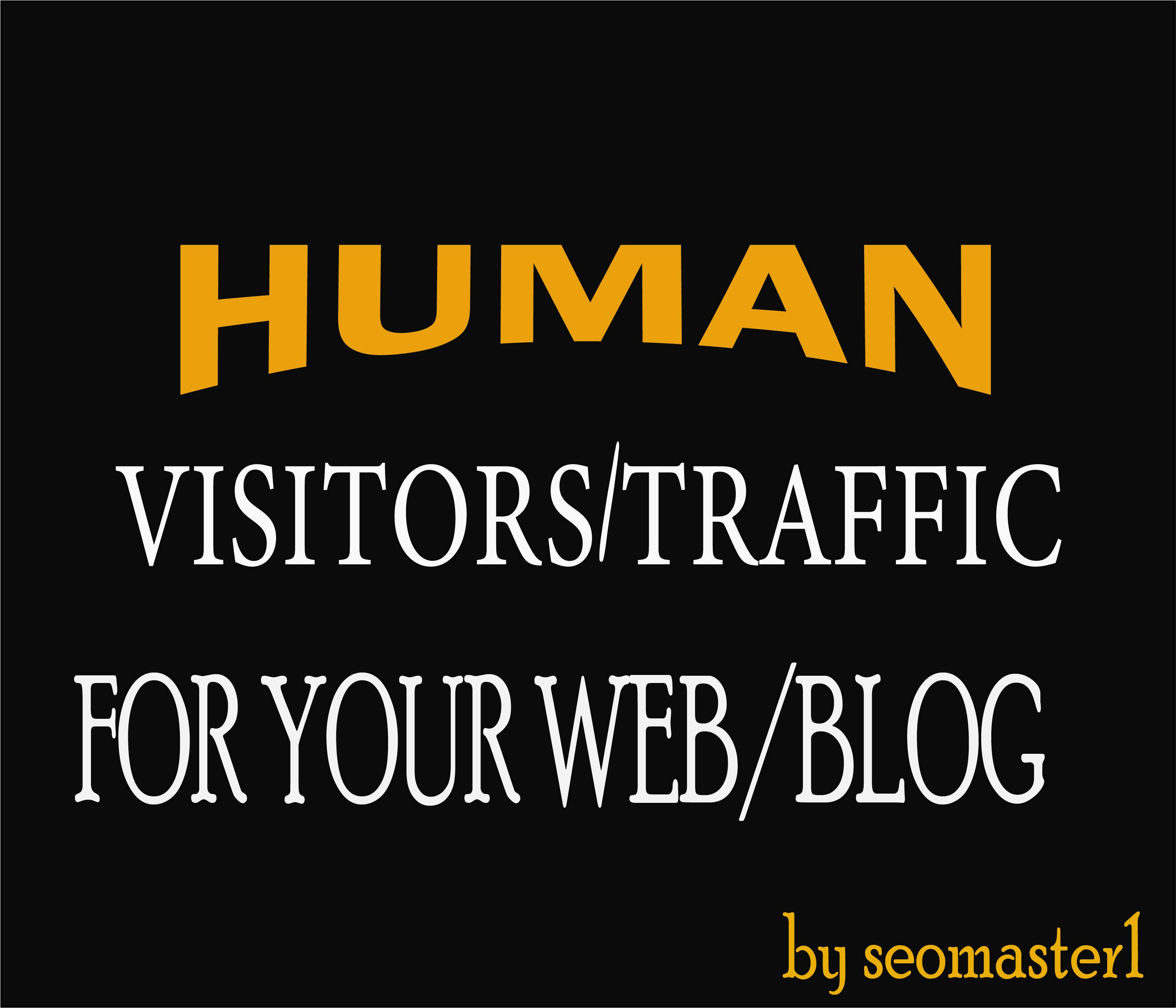 12000 Human visitors/traffic to your Web/Blog Adsense safe and get Good Alexa rank