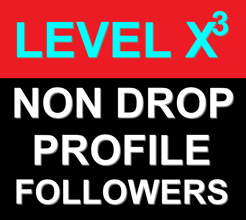 On-Sale Professional SEO Service 200+ Non Drop Profile Followers