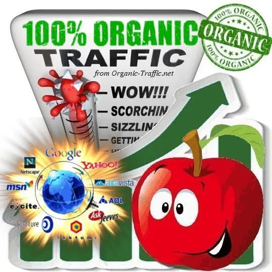 Organic & Targeted Traffic Service VIP SEO Boost
