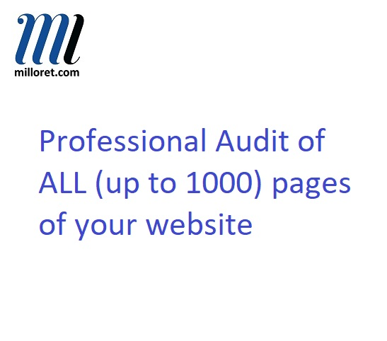Professional SEO audit of your webite