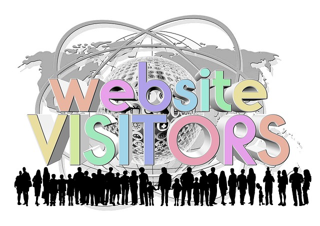 7500+ Verified 1 country website Traffic - not one day delivery
