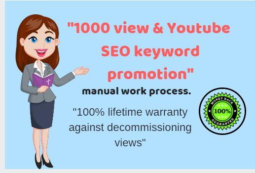 1000 v Social media video- SEO keyword promotion