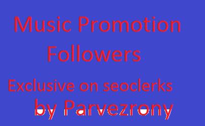 I will Get 1000 Music Followers,  Start Instant