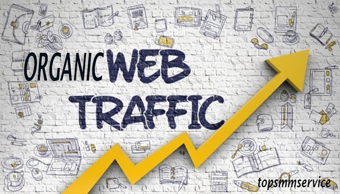 REAL and ORGANIC UNLIMITED Website TRAFFIC for 6 months