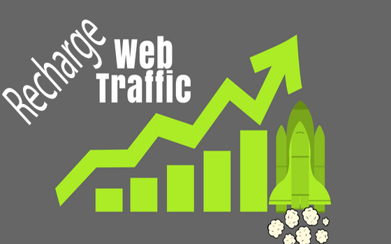 Daily 1000 website traffic for 6 month