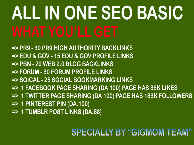All in One SEO Basic to Boost Rank