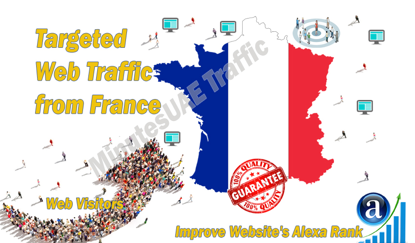 French web visitors real targeted Organic web traffic from France