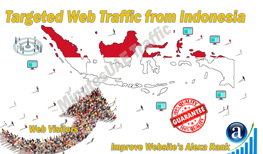 Indonesian web visitors real targeted Organic web tra...