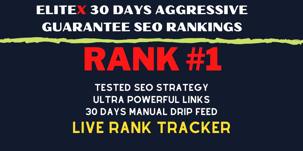 EliteX 30 DAYS Aggressive Guarantee SEO Rankings - Huge Diversified Manual Link Building
