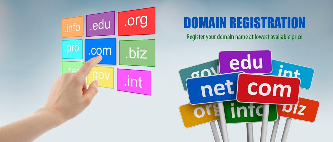Domain register / transfer service