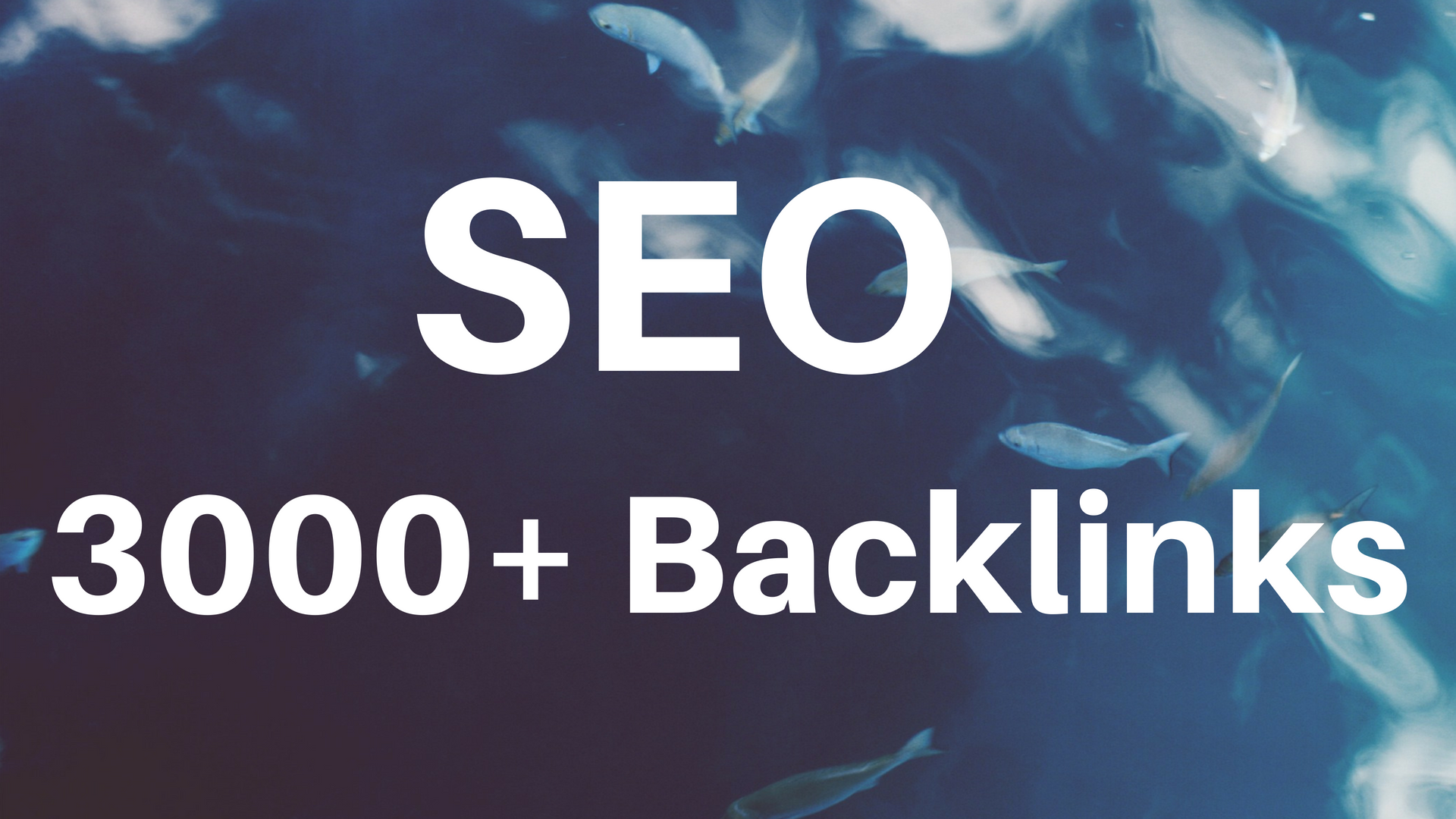provide SEO high da backlinks to rank your website