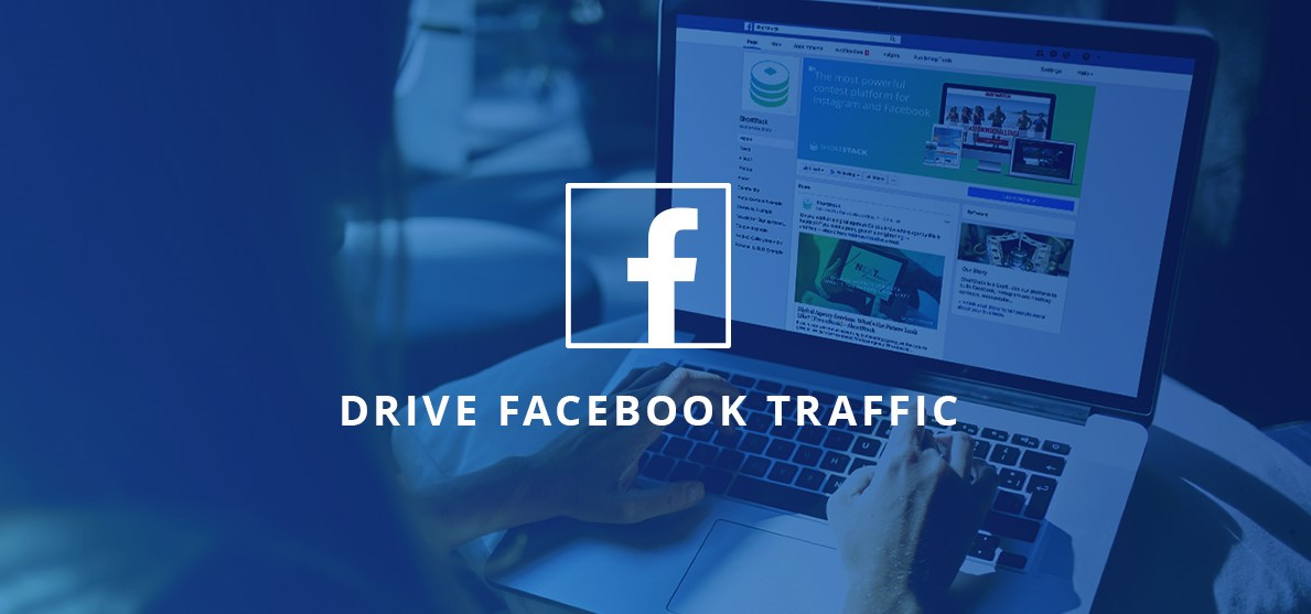daily facebook visitors to your website for 30 days