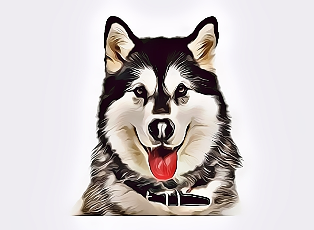 draw 3 your pet to portrait illustration vector art