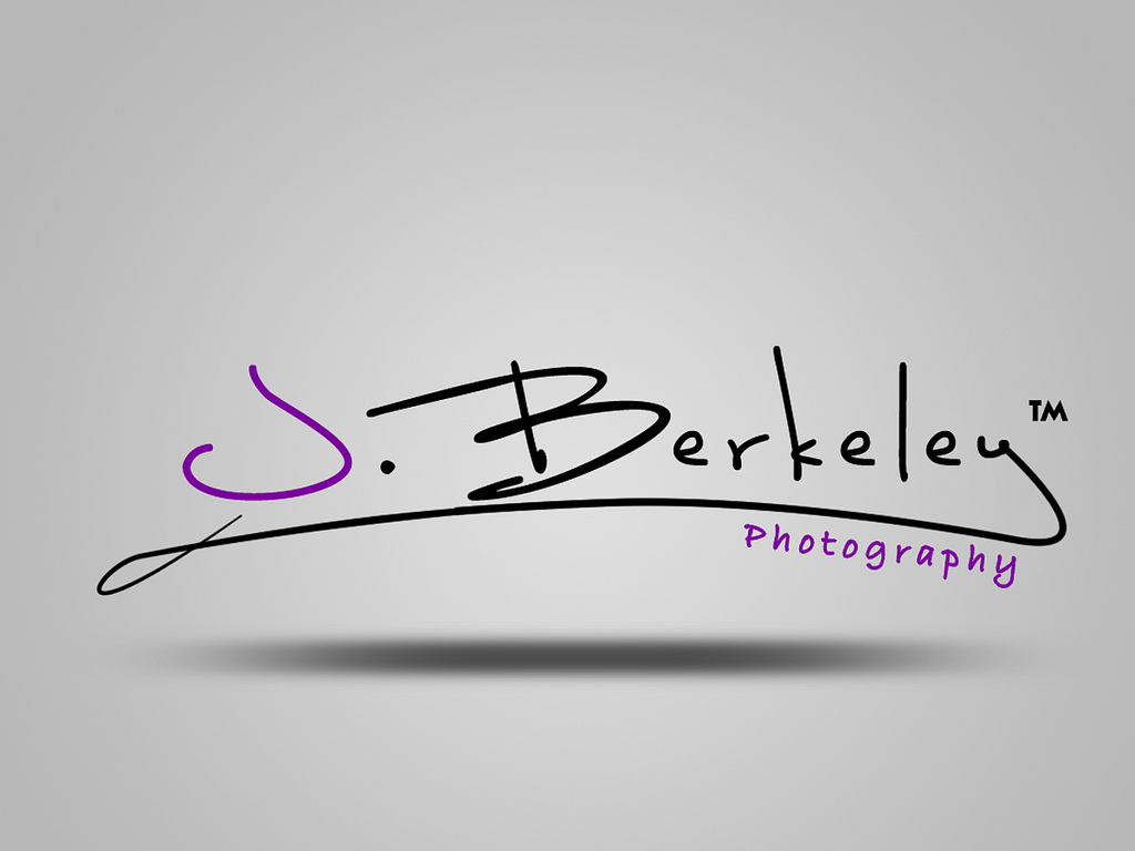 Design professional and Modern Signature logo