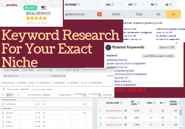 I will give 100 basic Keyword and 5 pro research keyword in your targeted niche for google ranked