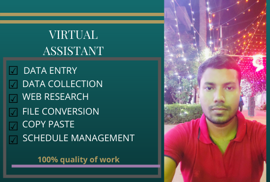 virtual assistant for data entry and web research