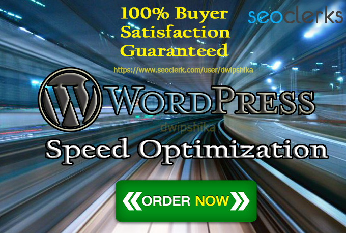 I will increase wordpress speed optimization with gtmetrix and google pagespeed