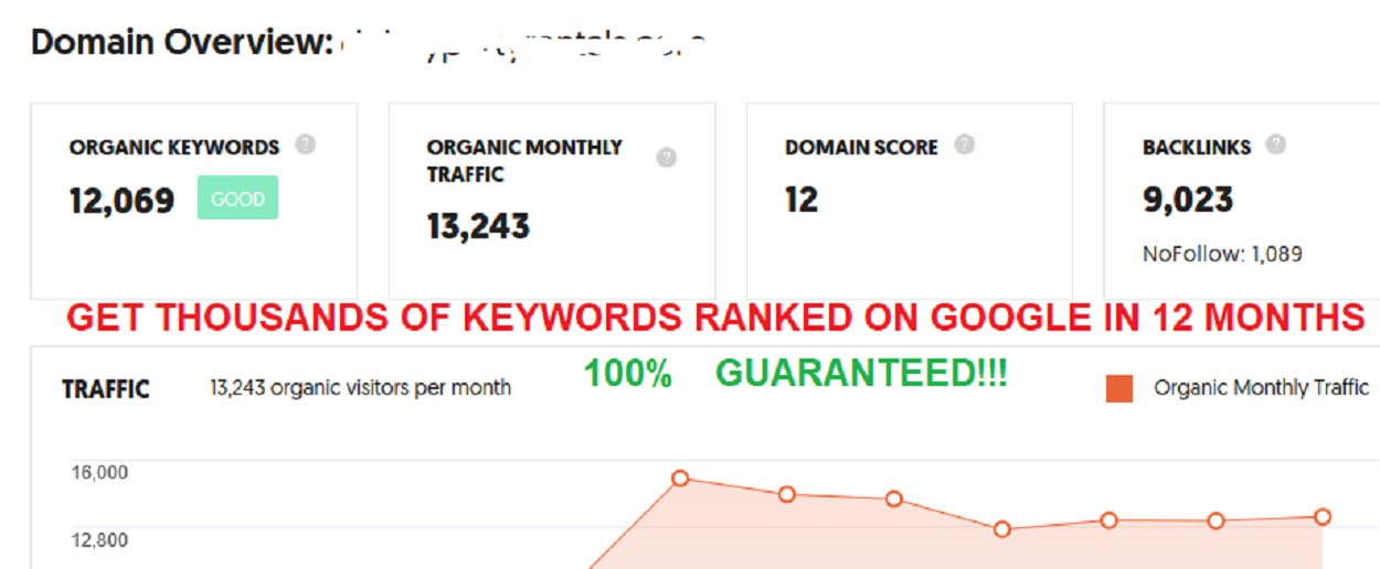 Monthly SEO Package Rank 500 Keywords On Google