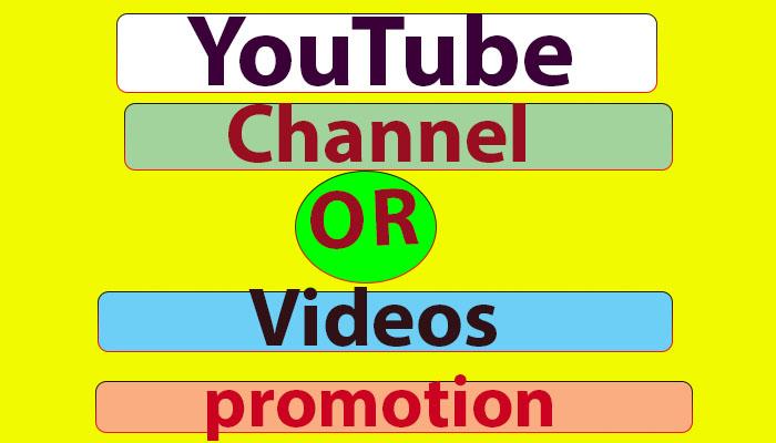 High-Quality Youtube promotion & social media marketing