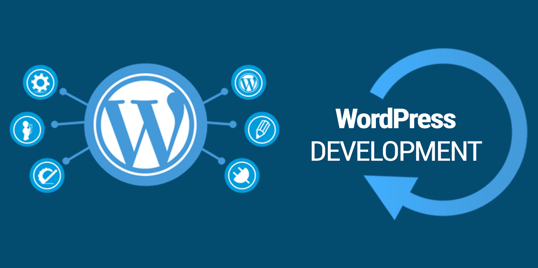 I will create a professional premium wordpress website design and development