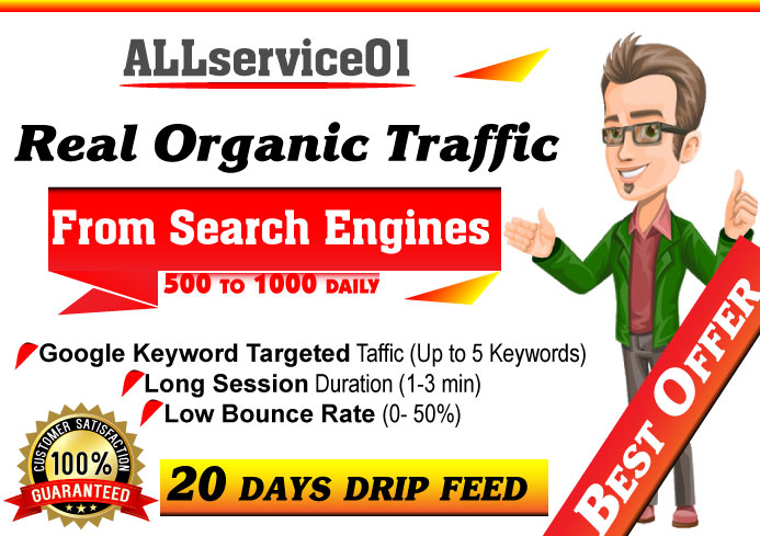 Organic Keywords Targeted GOOGLE Search Engine Traffic