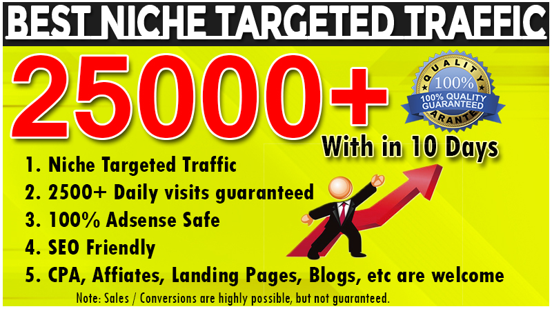 I will provide 25000 targeted website traffic real visitors