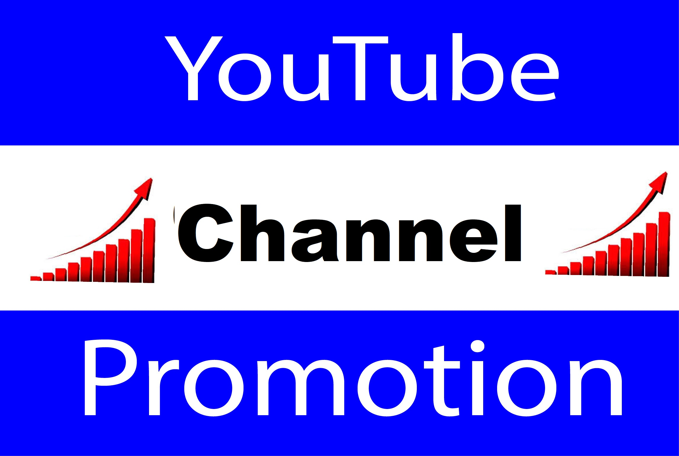 YouTube Account Or Video Promotion and Social Media Marketing