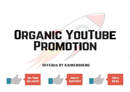 Organic YouTube Video Promotion / Marketing