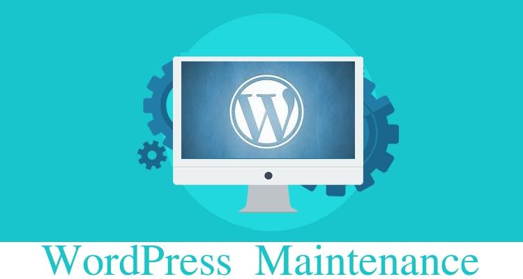 WordPress Monthly Checkup/ Maintenance - Installing, Theme, Plugin, HomePage, Form, Post, SEO, WooCommerce