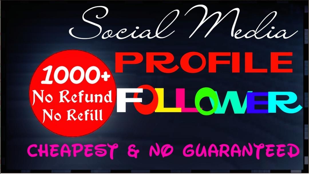 Deliver 1000+ social media follow instantly