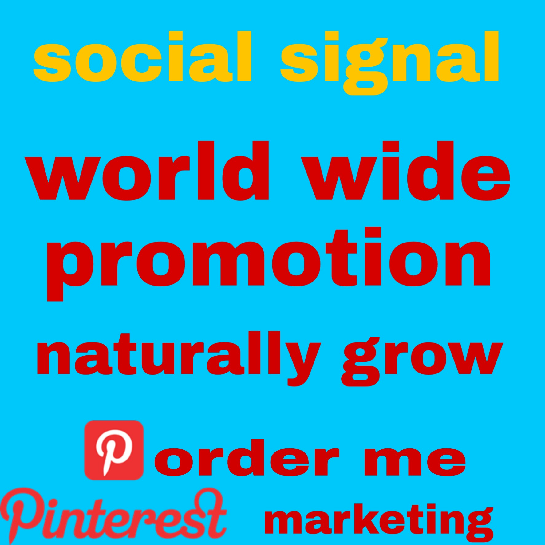 I will give you 500+ naturally grow world wide pinterest promotion fast delivery
