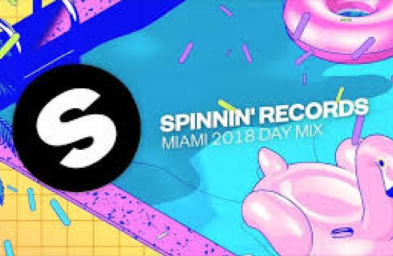 Add 105 Spinnin Records Talent Poll Votes for your spinnin contest