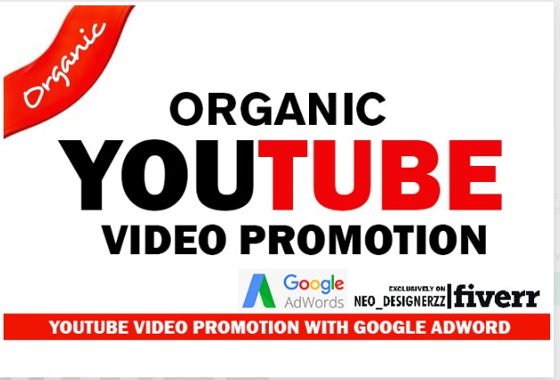 NON-DROP & HIGH QUALITY YOUTUBE VIDEO PROMOTION AND MARKETING in 24 HOurs