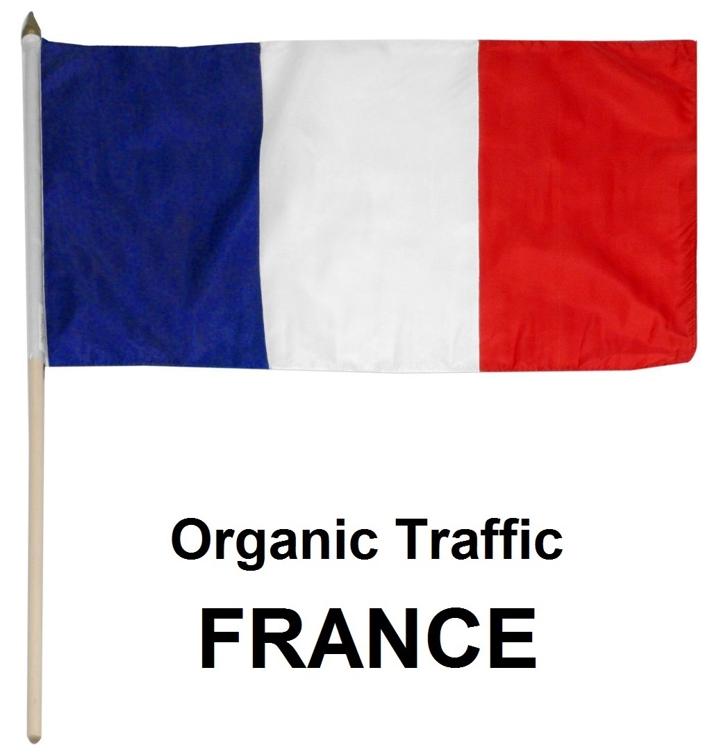 More than 5050 Real Organic Traffic from France,  USA