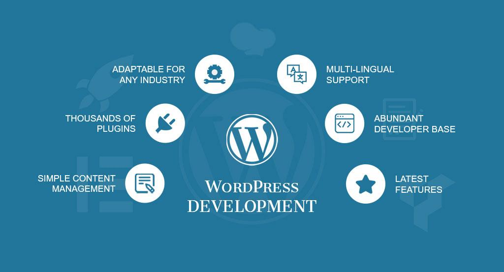DevoLoped Or Customize Wordpress