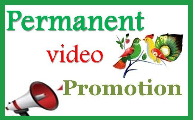 Manually Social Media Marketing Video Promotion