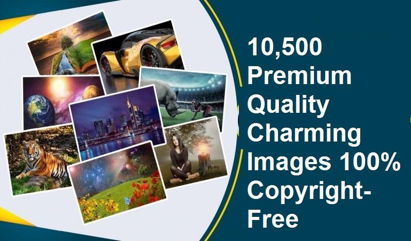 10,500 Premium Quality Charming Images 100 Copyright-Free