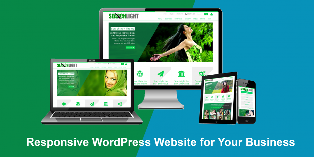 I will develop or design or customize wordpress website
