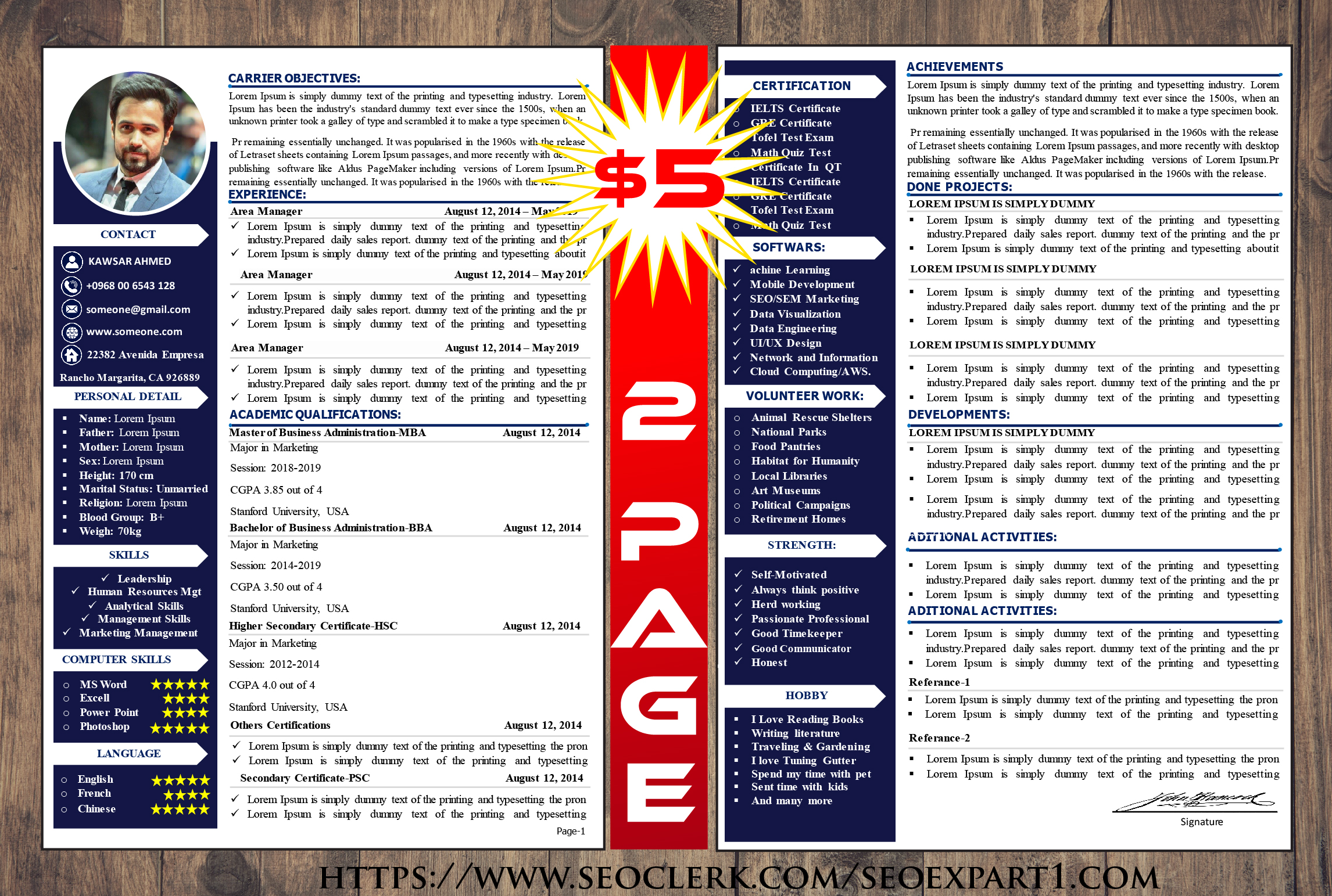 Brilliant resume template 2 page