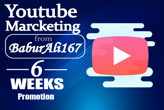 YouTube Video Marketing professionally grow and manage your youtube chanel