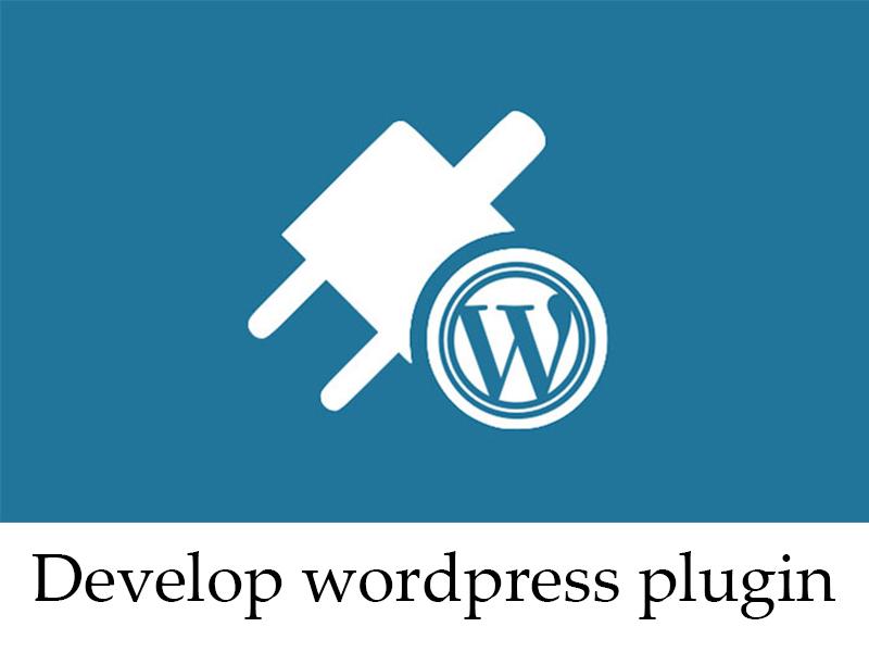 I will develop a wordpress plugin