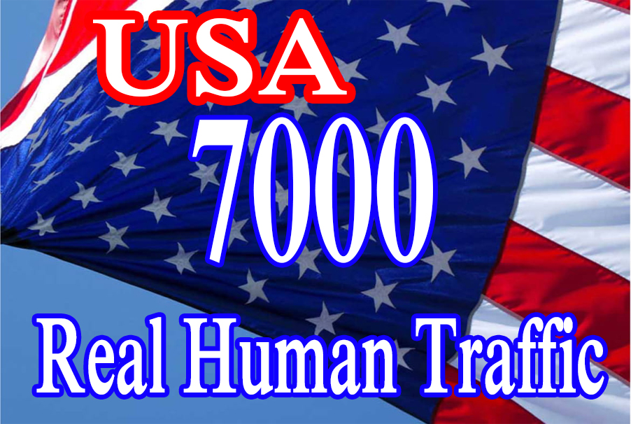 7000 USA Targeted Web Traffic in few Days