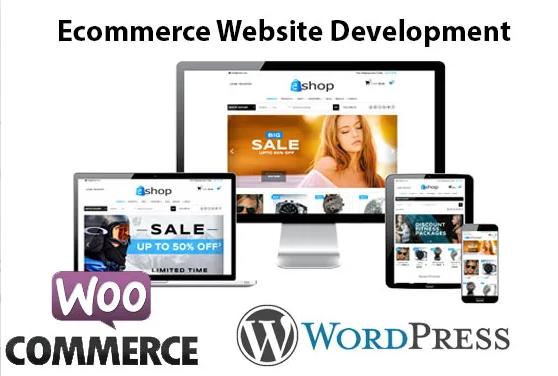 Wordpress E-commerce website For Sale