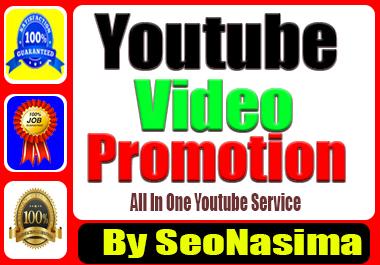 Organic You-Tube Video Marketing Promotion Via Real User & non Drop