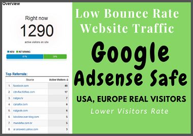 Drive Real Human WEBSITE TRAFFIC for 30 days NO-BOTS
