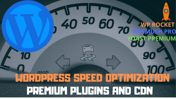 Speed up your wordpress website with premium plugins and cdn