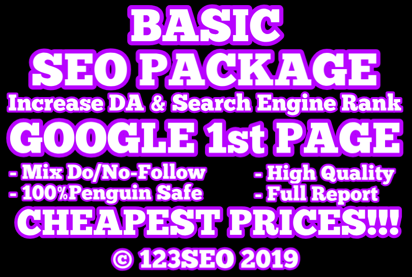 GOOGLE 1st PAGE  BASIC SEO PACKAGE