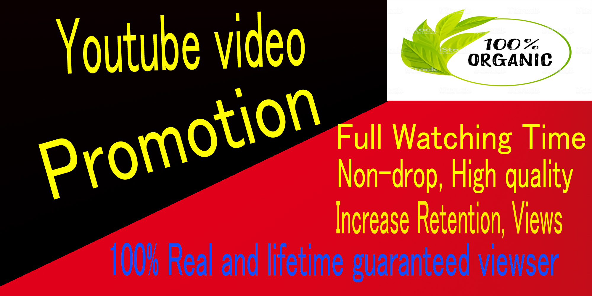 Real Instant,HQ,Non-drop,Youtube video Music promotion with Seo Ranking,monetization marketing